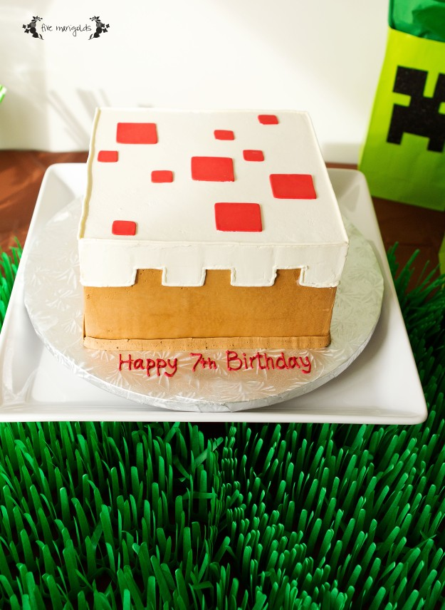 Minecraft Birthday Party Cake | Five Marigolds